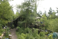 Son and John's structure and garden in May