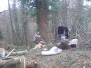 Tree felling by hand - a tree for Chris and Owen's dwelling